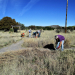 Preservation at Mimbres Culture Heritage Site