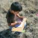 Armando sketching artifacts