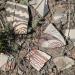 Woodrow Ruin sherd grouping  detail