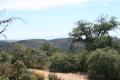 Microwave vista to Cooke's Peak