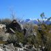 3 Rivers Petroglyph Site NM - Sierra Blanca to E - photo by M.Smith