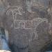 3 Rivers Petroglyph Site NM chimera - photo by M.Smith