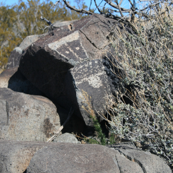 3 Rivers Petroglyph Site NM  Katsina  shaman  Tlaloc- photo by M.Smith