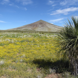 Gap Hill aka Petroglyph hill - K. Meredith