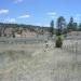 Ponderosa Ranch approach - photo by C.Overlock